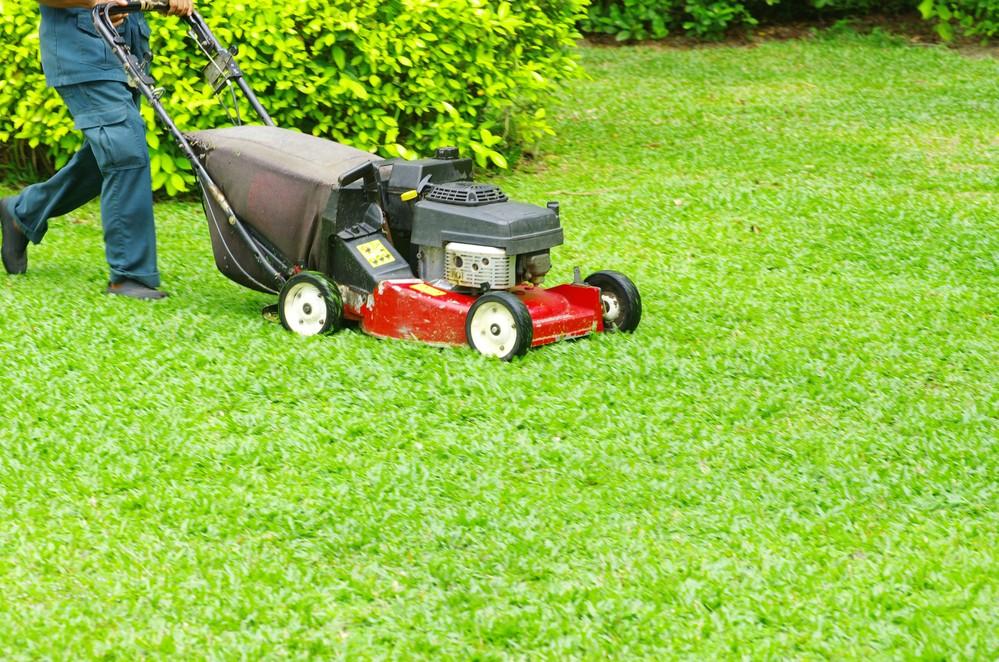 Best Lawn Mower Under $300
