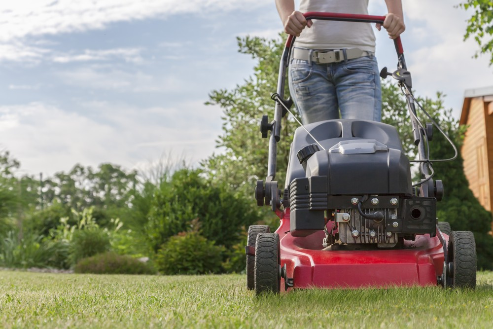 Best Self Propelled Lawn Mowers
