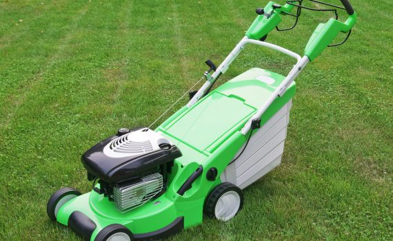 Greenworks vs. Snapper
