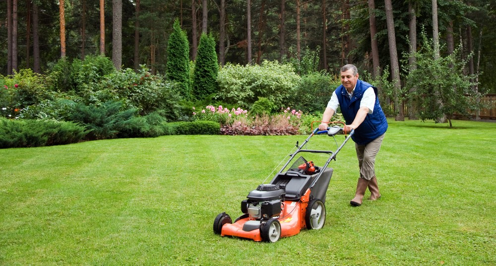 Self-Propelled Mowers Versus Push Mowers
