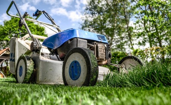best lawn mowers for small yards