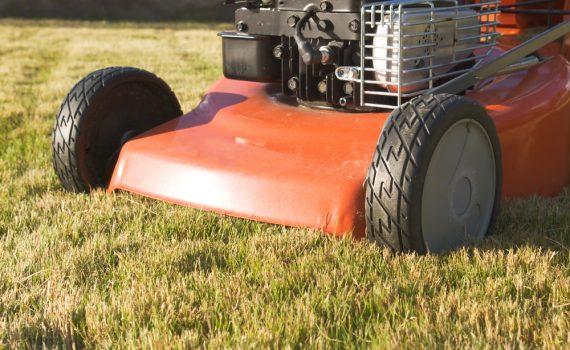 Honda Lawn Mower vs Toro Lawn Mower