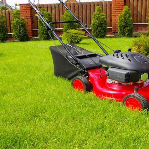 Pros and Cons of Self-Propelled Mowers