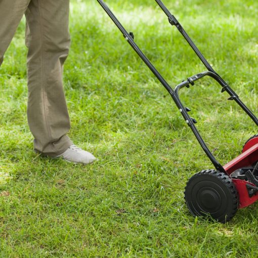 benefits of Reel Mowers