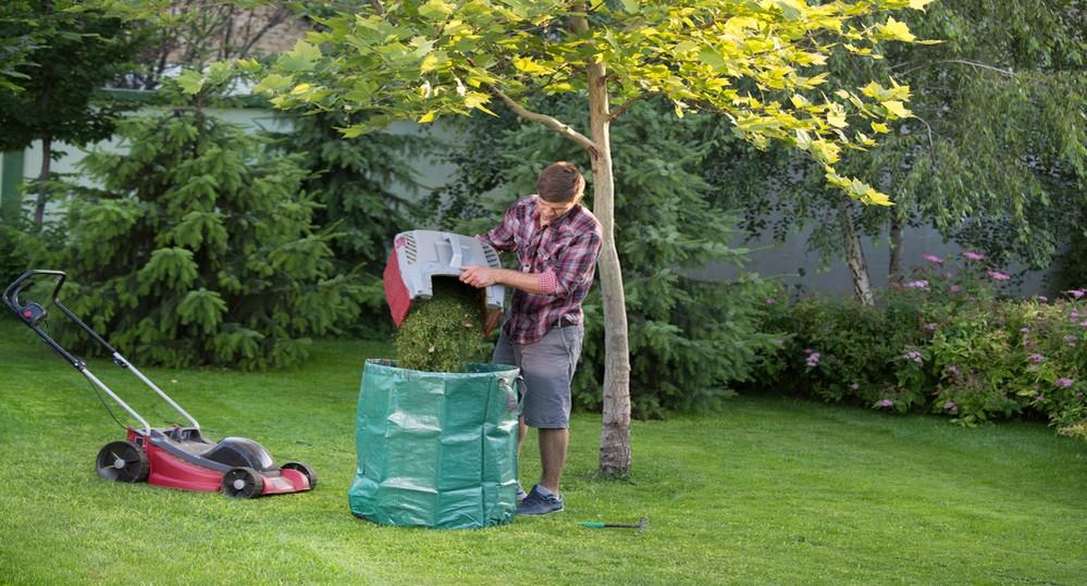 Mulching vs Bagging