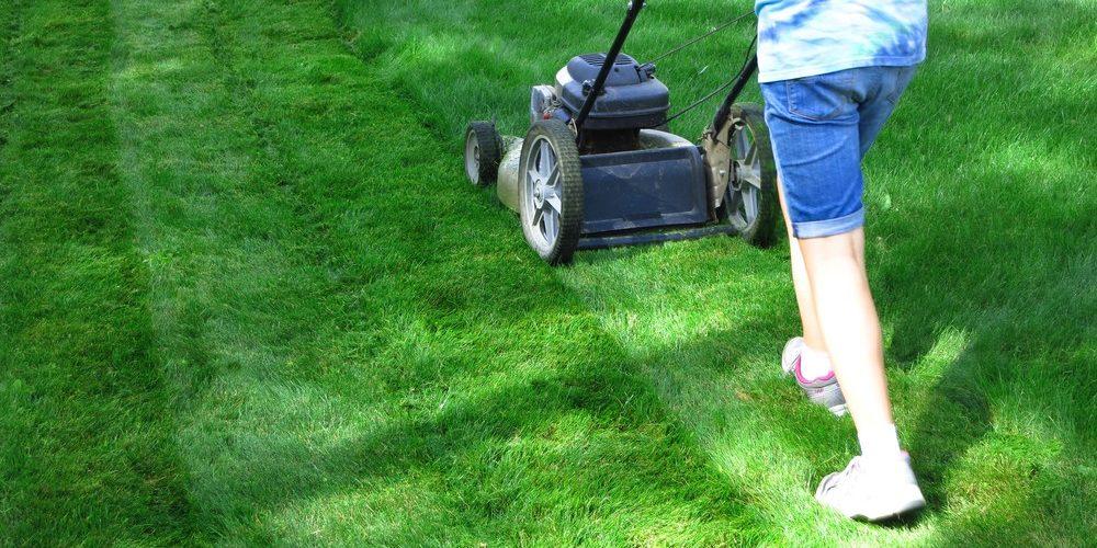 Types of Reel mowers